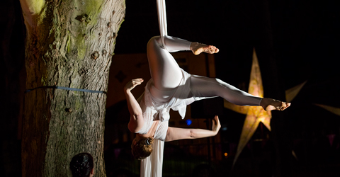 North Hykeham - Dreaming Tree artsNK aerial dance performance